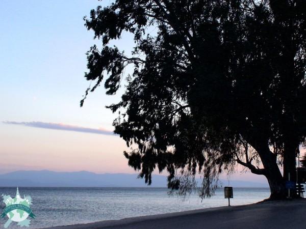 Presqu'île du Pelion - Grèce Centrale