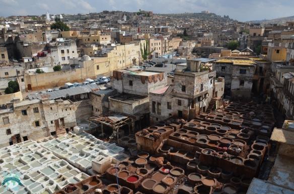 Chouara, le quartier des tanneurs - tannerie - Fès Maroc Road Trip Europe