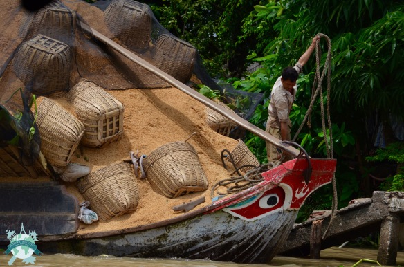 Cai Be et son marché flottant 3